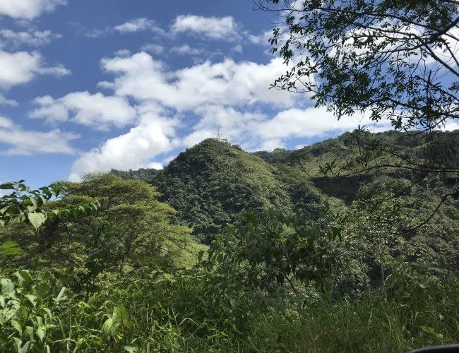 13- caminatas ecologicas - pagina servicios