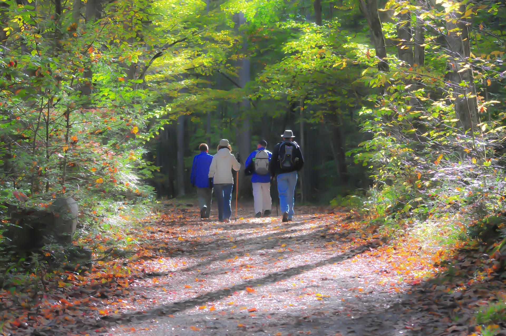 hiking-1232453_1920